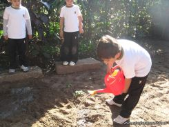1er grado Trabajando en la Huerta 21