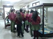 Visita al Museo de Ciencias Naturales 5