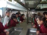 2do en el Laboratorio con Peceras 8