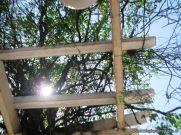Corrientes, Arte y Cultura 8