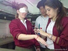 Receptores Sensoriales 9
