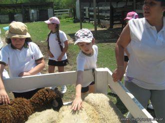 Visita a la Granja La Ilusion 2011 210