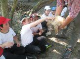 Visita a la Granja La Ilusion 2011 327