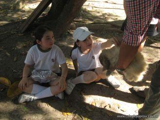 Visita a la Granja La Ilusion 2011 331