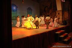Fogon Criollo 11