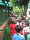 La Colonia visito el Zoologico 32