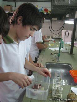 Experiencias sobre Biomoleculas 30