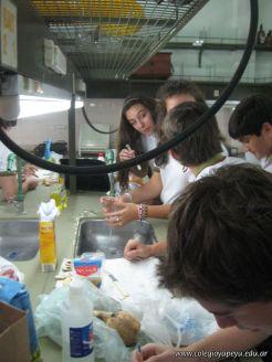 Experiencias sobre Biomoleculas 35