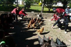 Visita a la Granja La Pituca 105