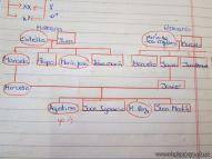 Arbol Genealogico 11