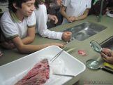 Experiencia en el Laboratorio 4