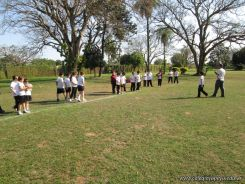 4to-rugby-hockey_120