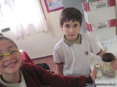 Cadenas-Alimenticias_08