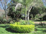 Visita al Jardin Botanico 19