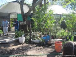 Visita al Jardin Botanico 22