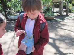 Visita al Jardin Botanico 44