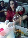 Produccion de Biogas 7