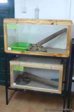 Visita al Serpentario 31