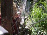 Visita al Zoologico de Salas de 3 24