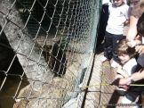 Visita al Zoologico de Salas de 3 25