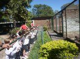 Visita al Zoologico de Salas de 3 44