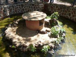 Visita al Zoologico de Salas de 3 53