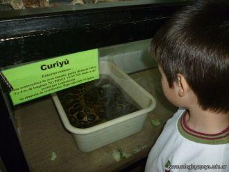 Visita al Zoologico de Salas de 3 68