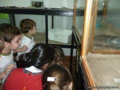 Visita al Zoologico de Salas de 3 72