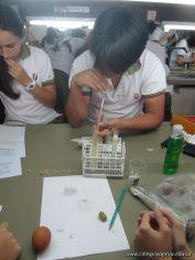 Biomoleculas 10