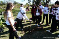 Dia del Arbol 2013 16