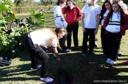 Dia del Arbol 2013 24