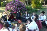Dia del Arbol 2013 55