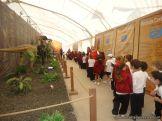 Dinosaurios en Salas de 5 2