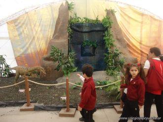 Dinosaurios en Salas de 5 20
