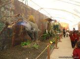 Dinosaurios en Salas de 5 3