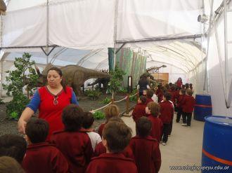 Dinosaurios en Salas de 5 31