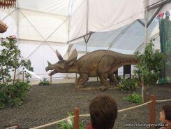 Dinosaurios en Salas de 5 32