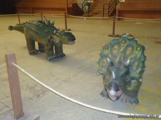 Dinosaurios en Salas de 5 45