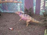 Primaria visito el Mundo Jurasico 24