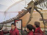 Primaria visito el Mundo Jurasico 33