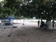 Campamento de 2do año 4
