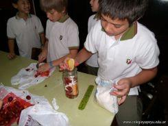 Preparamos Mermelada de Frutilla 34