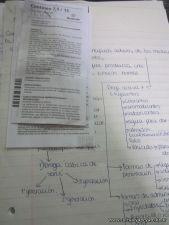 Farmacologia 5