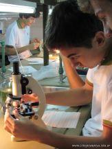 Observacion con Microscopios 4