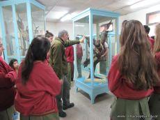 Visita al Museo de Ciencias Naturales Amado Bompland 6
