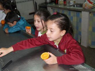 Jugo de Naranjas en Salas de 5 41