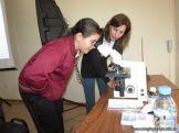 Aprendimos a usar el Microscopio Optico 26