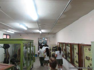 Visita al Museo de Ciencias Naturales 105