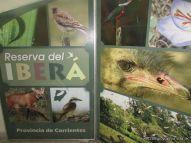 Visita al Museo de Ciencias Naturales 36