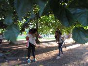 Paraje Rincon de Ambrosio 68